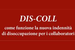 Nidil Dis-Coll